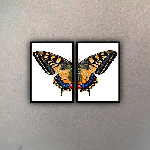 Díptico Mariposa I (2 Cuadros)