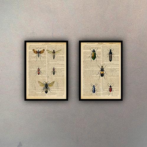 Set Insectos Fondo Vintage (2 Cuadros)