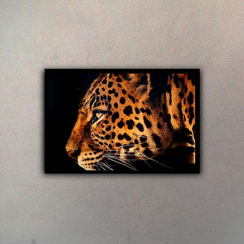 Leopardo Color