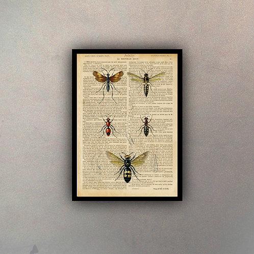 Insectos Fondo Vintage