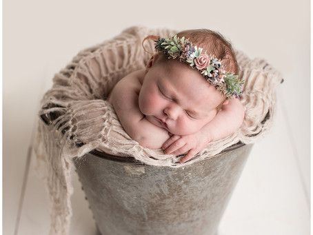 Olive's Newborn Photographs