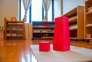 Little Valley Montessori Pink Tower