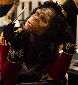 Chimp BHBE 2019-216.png