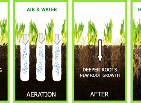 AERATION: WHY, HOW AND WHEN TO AERATION YOUR LAWN