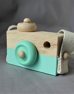Wooden Camera in Green