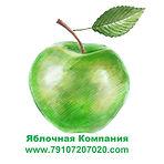 Купим яблоки для промышленной переработки.