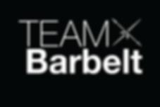 webteambarbelt.png