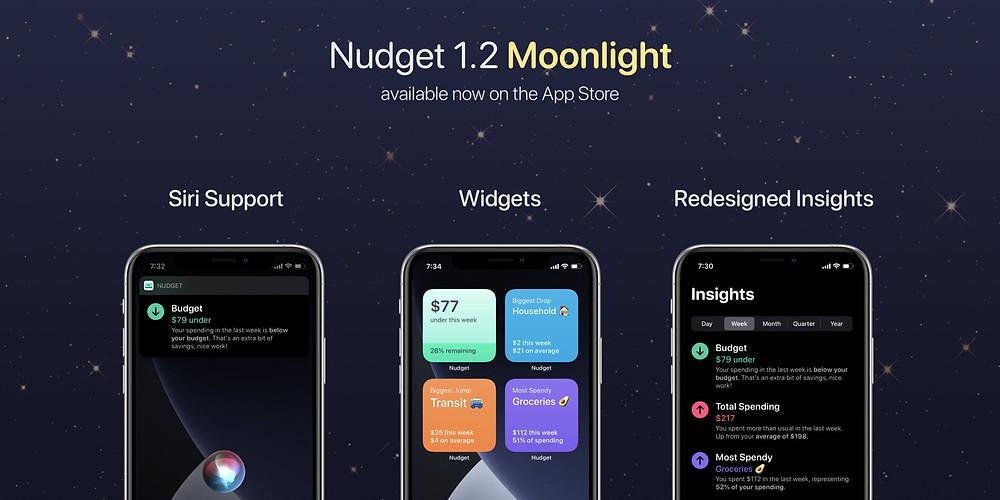 Nudget iOS 14 Widget Design