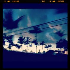 Hawaii at down