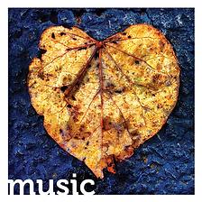kotfas leaf