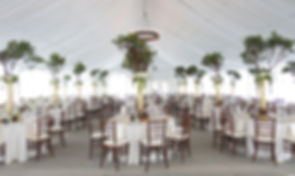 tent wedding with draping.jpg