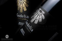 Godelia conjunto con firma.jpg