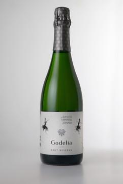 Botella Godelia.jpg