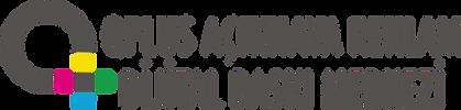 qplus-logo.png