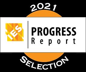 ies-progress-report-2021.png