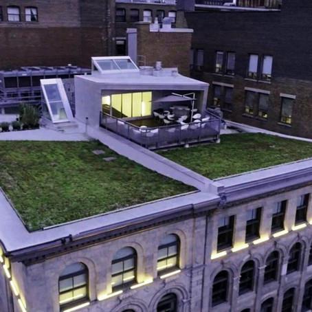 Meet PHI Centre's New Rooftop Venue