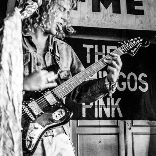 The Flamingos Pink