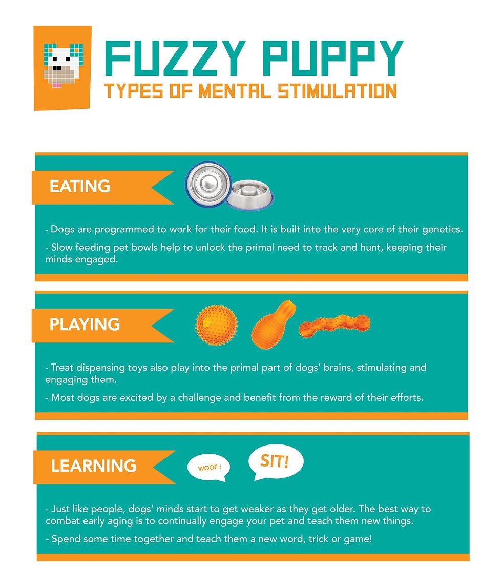 Mental Stimulation For Your Pet