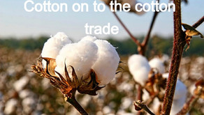Cotton on to the cotton trade