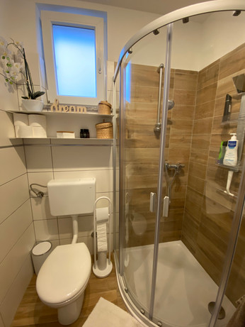 Shower and toilet...