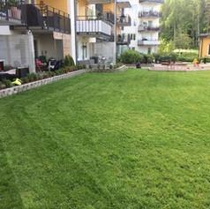 Nyklippt gräsmatta Kallhäll