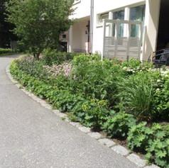 Bostadsgård Hässelby - Efter