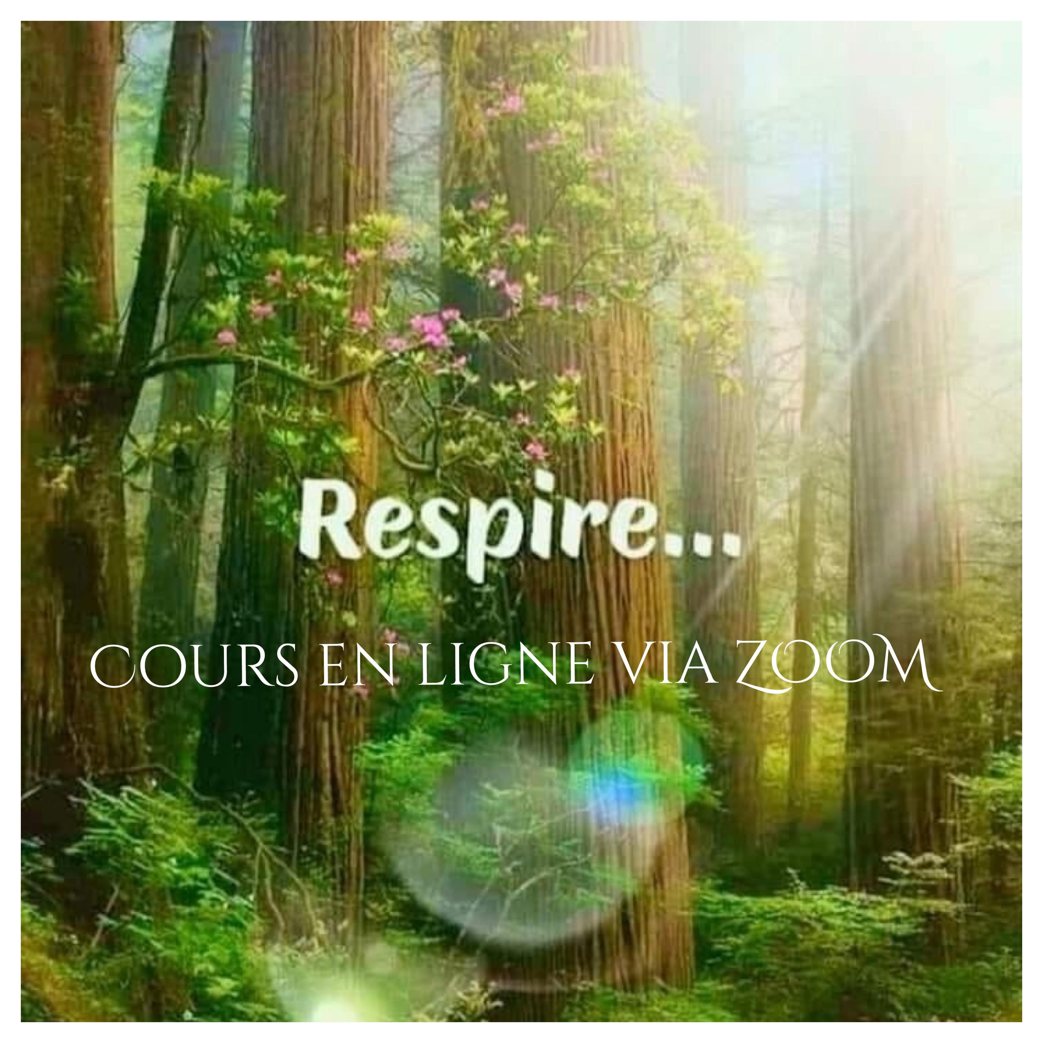 Méditation & Respiration En Ligne