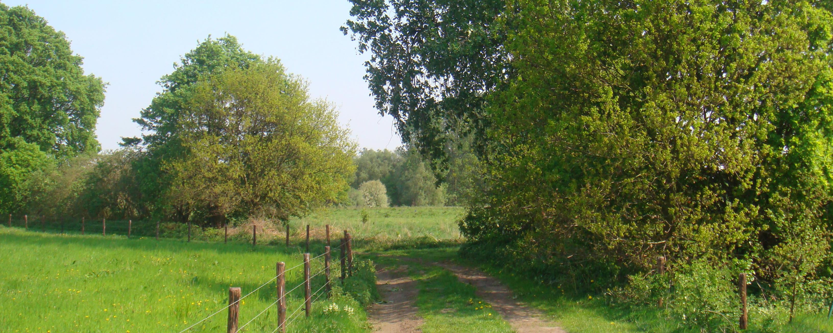 Wandelpaden De Graspol 3
