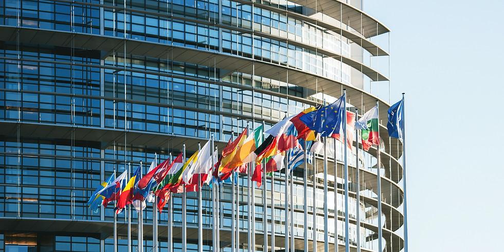 Online: Effective Intercultural Communication (2 sessions) Part 2