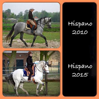 Hispano LXVI, Cartujano hengst