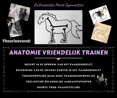 Anatomie vriendelijk trainen website.png