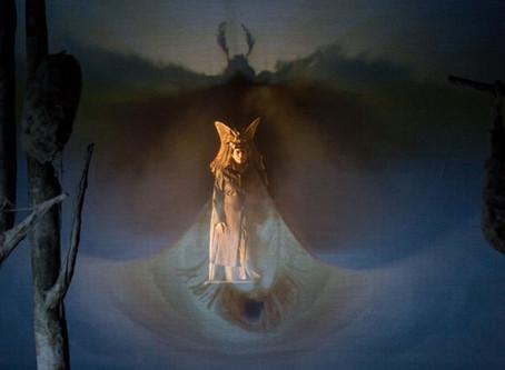 SILVIA PAOLI | The Moth Princess