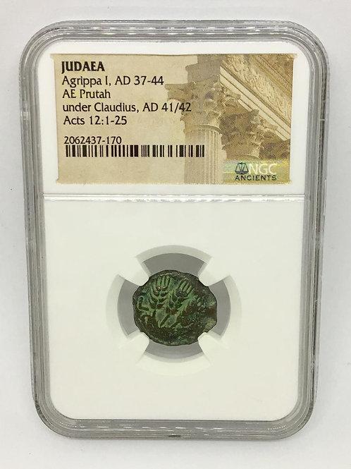 Ancient Coins Judaea Agrippa I, AD 37-44 AE , AD 41/42 NGC #2062437-170
