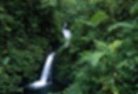 waterfall_MV.jpg