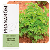 HE_geranium_bourbon_pranarom.jpg