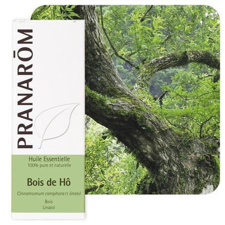 Bois de Hô - Cinnamomum camphora ct linalol