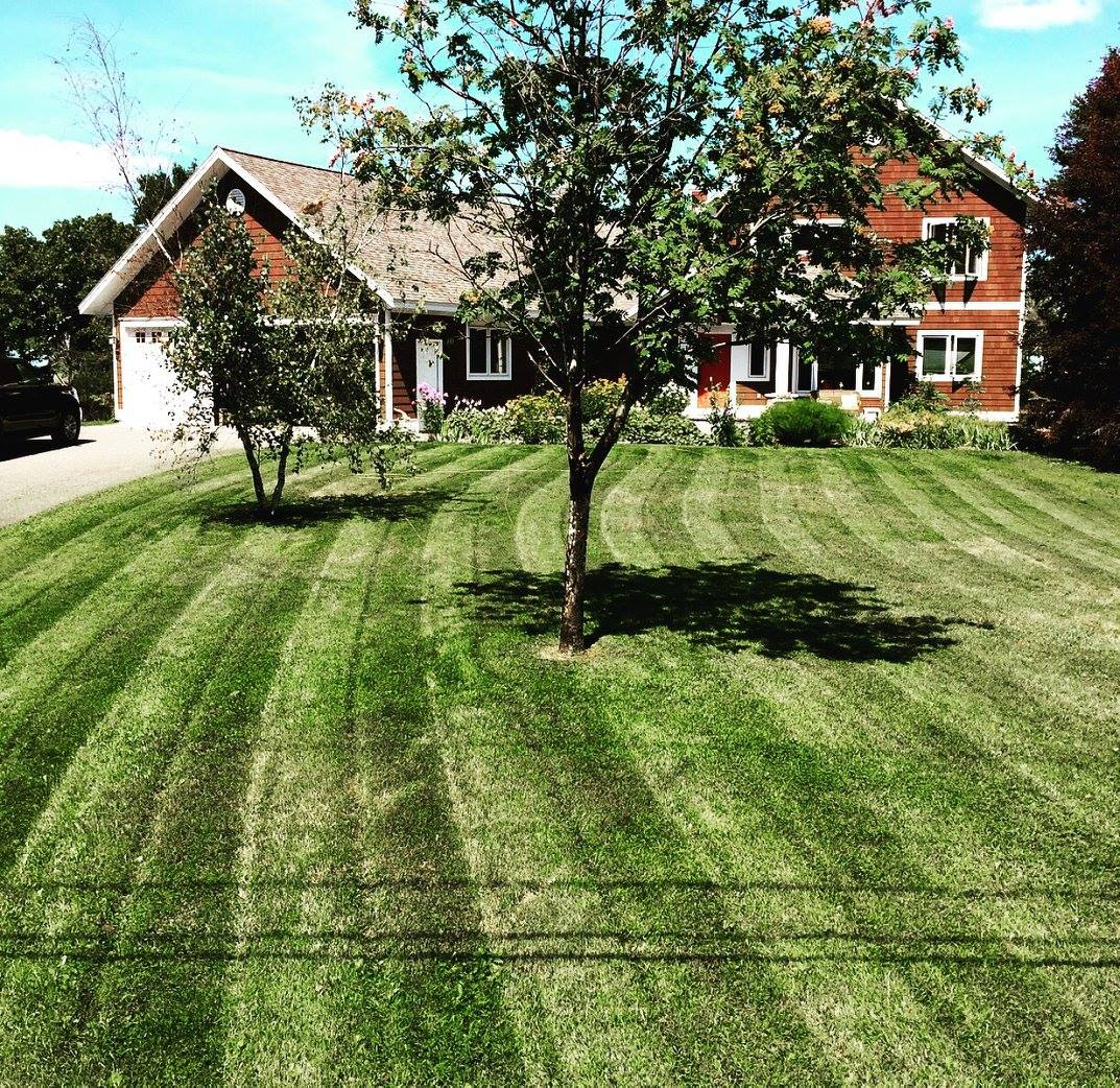 Mowing Services and Sod Installation