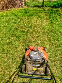 Lawn Maintenance & Garden Care