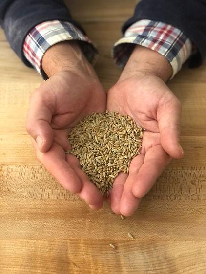 Bread and Flours - Gazelle Rye