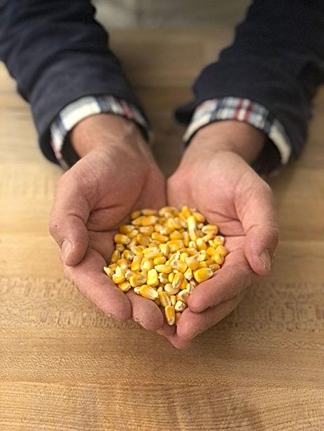 Bread and Flours - Organic Corn