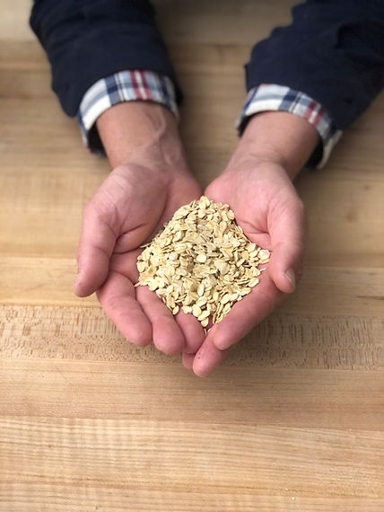 Bread and Flours - Organic Oats