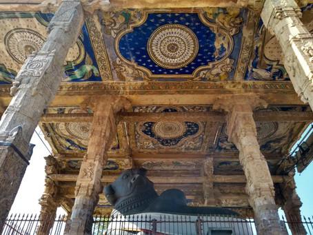 Von Poojas, Tempeln und den Yogis - kraftvolle Bündel