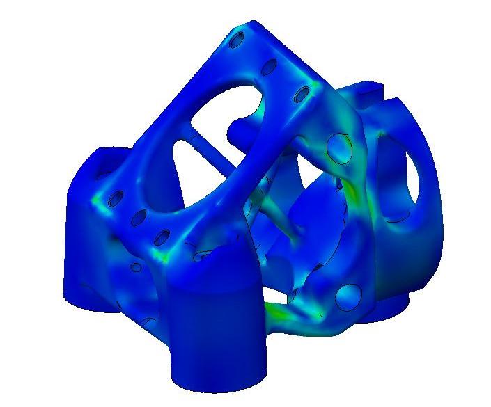 V5-FEM (1).JPG