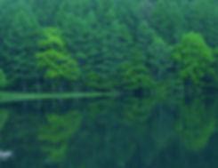 自然豊かな蓼科-御射鹿池2.jpg