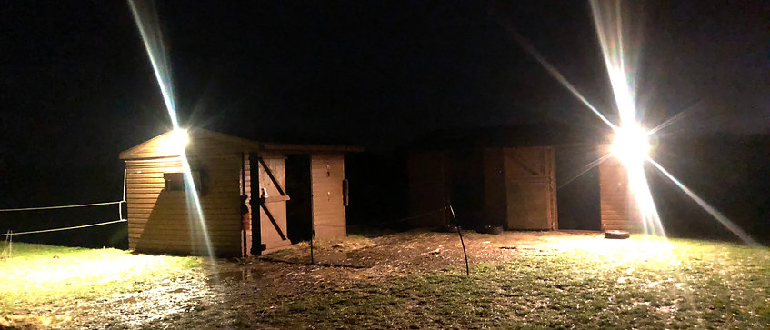 4 Flood Light Kit For Stables And Barns