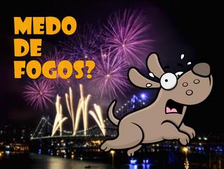 Medo de fogos? Confira algumas dicas para acalmar seu cão durante as épocas festivas!