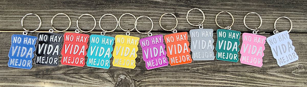 Best Life Ever No Blood Transfusion Information Keychain for Jehovahs Witnesses in Spanish 11 Colors