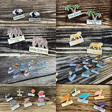 Everlasting Life Lapel Pins for Jehovahs