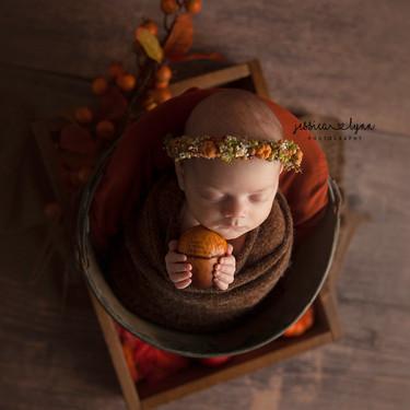 newbornfall2020.jpg