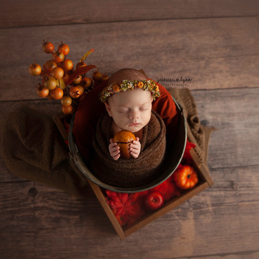 newbornbabyfall2020.jpg